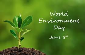 result of world environment day essay competition omafuru  result of 2017 world environment day essay competition