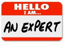 Image result for Domain expert