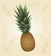 pineapple drawing. learn how to easily draw a vector pineapple using the 3d revolve effect, create realistic texture and apply it with map art option. drawing