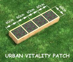 urban vitality vegetable patch small backyard veggie patch raised vege bed