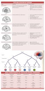 Aphasia Chart Type Location Basic Characteristics Of Aphasia Cheat