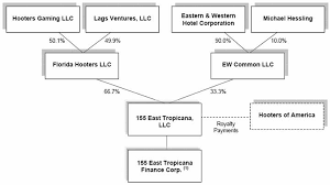 155 East Tropicana Llc 2009 Annual Report 10 K