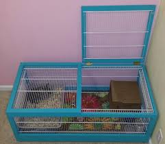 custom indoor rabbit hutch