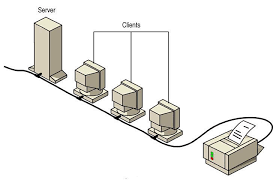 What Is A Server Server Based Network In The Network Encyclopedia