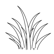 Small Picture Plants World Grass Coloring Pages Color Luna