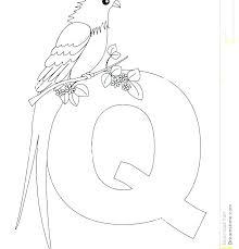 letter q coloring pages quail coloring page food from heaven coloring pages quail coloring page letter letter q coloring pages