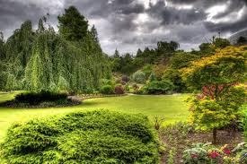 Resultado de imagen de El más bello jardín