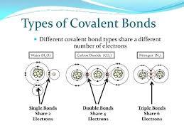 Ionic And Covalent Bonds Venn Diagram Co2 Covalent Bond Diagram Practice Oasissolutions Co