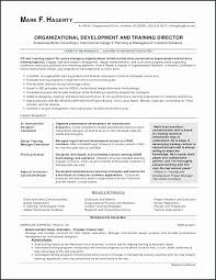Tips On Making A Resume Stunning Resume Writing Tips From How To Write A Summary For A Resume Elegant