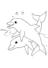 Dolfijnen Mandala Kleurplaten Ausmalbilder Delfine Kostenlos