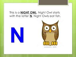 This is a NIGHT OWL Night Owl starts with the letter N