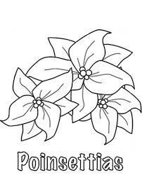 Click the poinsettia flower coloring pages to view printable version or color it online (compatible with ipad and android tablets). How To Sketch Poinsettia Flower Coloring Page Download Print Online Coloring Pages For Free Color Nimbus