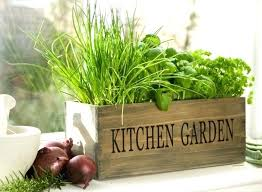 "Image result for herb gardens ideas ""org"""