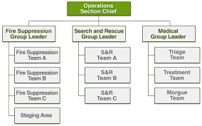 Expanded Cert Organizational Chart Showing The Operations