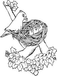 Small Picture printable pictures of birds free printable coloring page