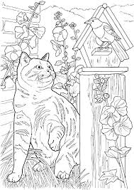 Small Picture 1019 best Colouring pages images on Pinterest Drawings Adult