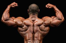 Bodybuilding Diet Chart For Men Feed Your Muscles A Sample Bodybuilding Diet