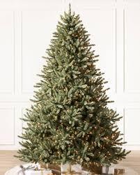 Classic Blue Spruce Tree-1