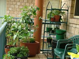 apartment gardening. Plain Gardening Apartment Food Container Gardening Getting Started And T