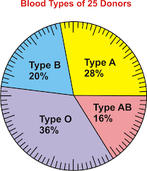 How To Make A Pie Chart On Ti 84 Plus Pie Charts Bar Graphs Histograms And Stem And Leaf Plots