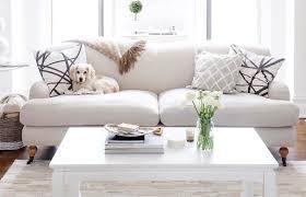 animal friendly furniture. Animal Friendly Furniture N