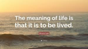 Meaning Of Life Quotes