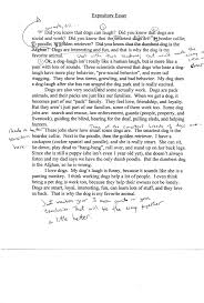 Sample  th grade expository essay Pinterest