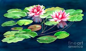 pink painting two water lilies with pads by sharon freeman