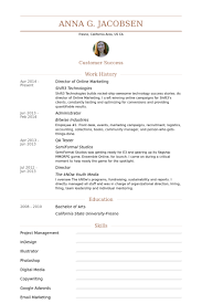 Marketing Resume Examples Fascinating Online Marketing Resume Samples VisualCV Resume Samples Database