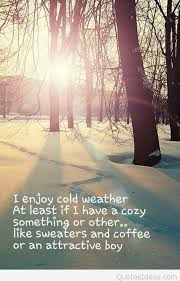 Cold Weather Quotes Magnificent Enjoy Cold Weather Quote Image