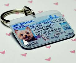 Id Driver Dogs 25 By 00 Michigan On Tags License 3 Pet Etsy Id Id4pet Tags Animals