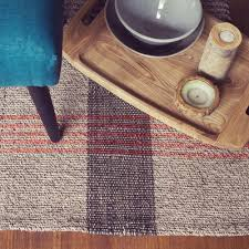best area rugs for pet owners