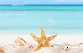 <b>Happy Summer</b> Holidays