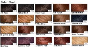 Medium Brown Hair Colour Chart Chestnut Brown Hair Color Warm Mocha Hair Hair
