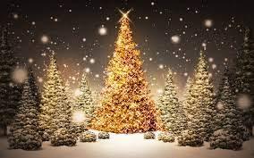 1680x1050 Christmas Tree desktop PC ...