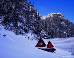 Image result for poze primavara-iarna