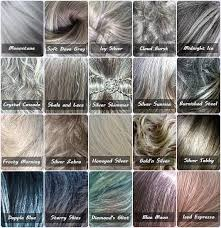 Gray Color Chart Because Not All Gray Hair Is The Same