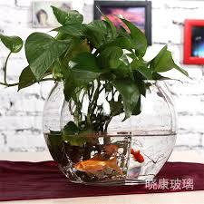 bowls glass bowl plants pumpkin form plum flower transpa goldfish hydroponic plant pots round vase