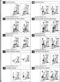 Weider Home Gym Exercises Vinoit