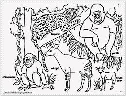 Small Picture Free Printable Jungle Animals Coloring Coloring Pages