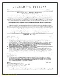 Professional Resume Writers Nyc Resume Work Template Inside