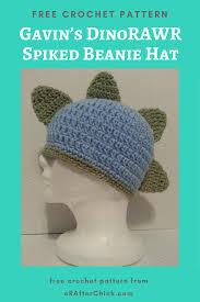 Beanie Hat Pattern Cool Design Ideas