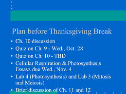 essays about thanksgiving thanksgiving day essay thanksgiving day essay order paper full friar lawrence essay pursuit of happiness essay