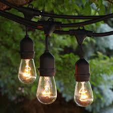 48 ft black commercial medium string light w suspender with 11s14 clear bulbs