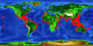 hammerhead shark habitat. Unique Hammerhead World Distribution Map For The Scalloped Hammerhead And Hammerhead Shark Habitat A
