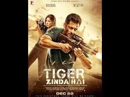 review of tiger zinda hai lo