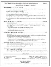 Resume Template Copy And Paste Gorgeous Copy Paste Resume Template Blockbusterpage
