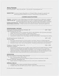 Readwritethink Resume Generator Professional Template Business Plan