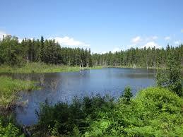 Parc national de la Pointe-Taillon