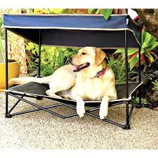 diy outdoor dog bed outdoor bed for dogs s outdoor dog bed with canopy outdoor bed